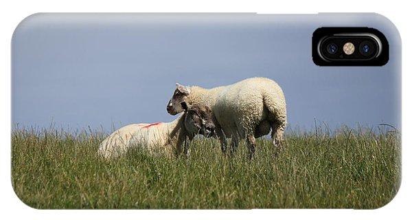 Sheep 4221 IPhone Case