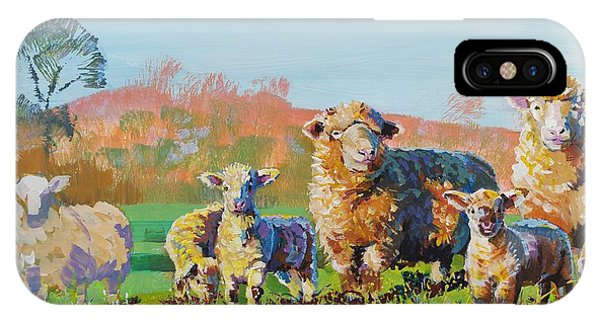 Sheep And Lambs In Devon Landscape Bright Colors IPhone Case