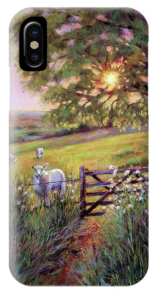 Sheep At Sunset IPhone Case