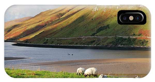 Sheep Grazing In Connemara Ireland Phone Case by Pierre Leclerc Photography