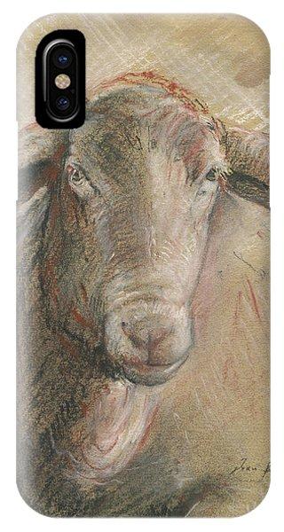 Sheep iPhone X / XS Case - Sheep Head by Juan Bosco
