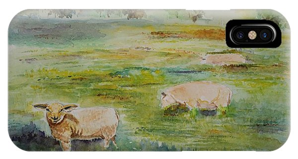 Sheep In Pasture IPhone Case