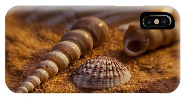 Shells Phone Case by Anthony Towers