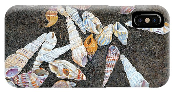 Shells From The Sea Of Galilee IPhone Case