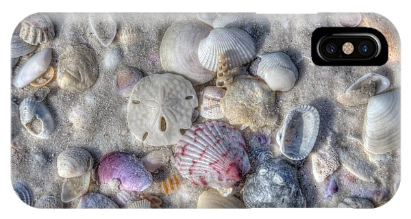 IPhone Case featuring the photograph Shells, Siesta Key, Florida by Paul Schultz