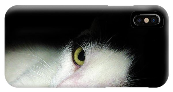 Shelter Cat IPhone Case