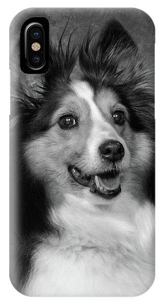 Sheltie In Black And White IPhone Case