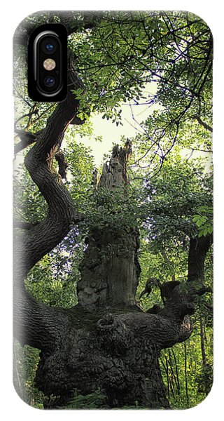 Dungeon iPhone Case - Sherwood Forest by Martin Newman