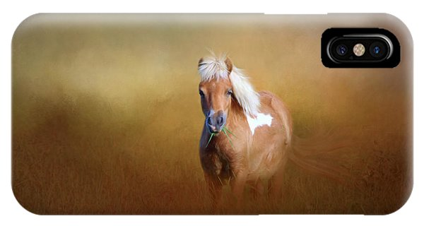 Shetland Pony IPhone Case