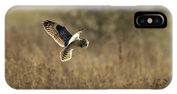 Short-eared Owl About To Strike IPhone Case