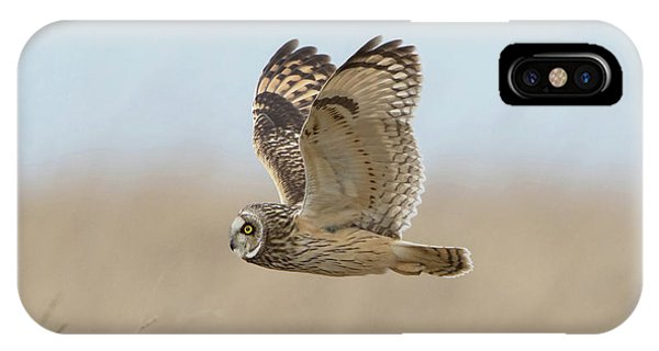Short-eared Owl Hunting IPhone Case