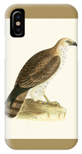 Short Toed Eagle IPhone Case
