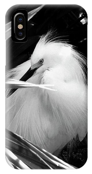 Shy Snowy Egret IPhone Case