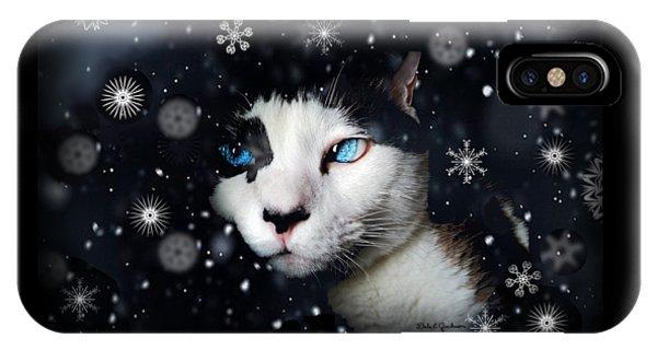 Siamese Cat Snowflakes Image   IPhone Case