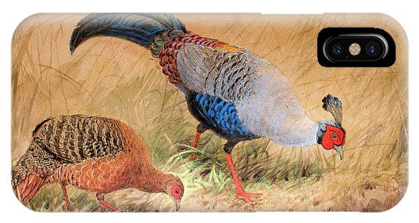 Siamese Pheasant  IPhone Case