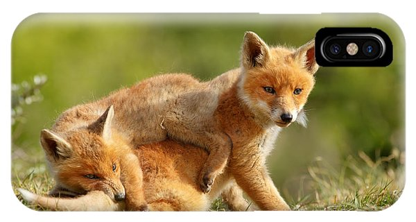 Sibbling Love - Playing Fox Cubs IPhone Case