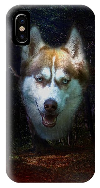 Siberian Husky IPhone Case