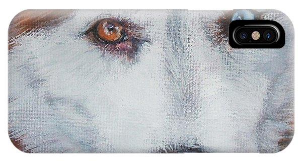 Sled Dog iPhone Case - Siberian Husky Red by Lee Ann Shepard
