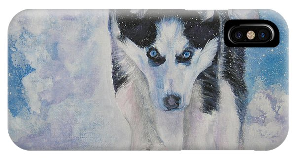 Sled Dog iPhone Case - Siberian Husky Run by Lee Ann Shepard