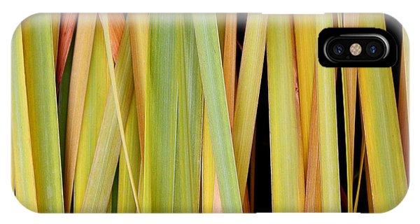 Siberian Iris In Winter IPhone Case