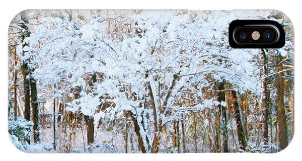 Siebold Viburnum In Snow IPhone Case