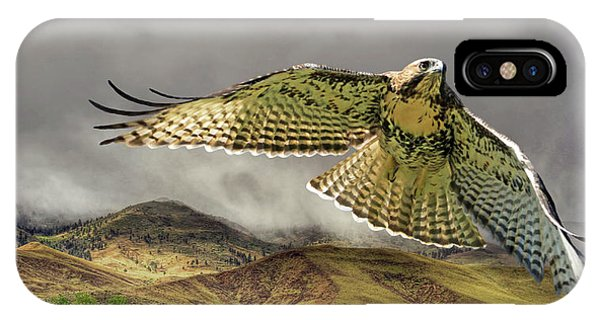Red Tail Hawk iPhone Case - Sierra Mist by Donna Kennedy