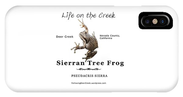 Sierran Tree Frog - Photo Frog, Black Text IPhone Case
