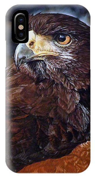 Sig The Harris Hawk IPhone Case