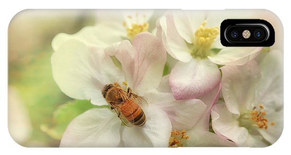 Honeybee iPhone X Case - Signs Of Spring by Susan Capuano