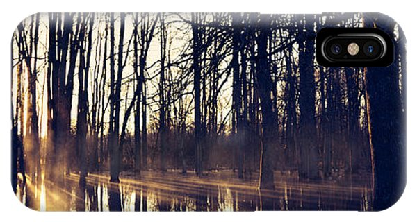 Silent Woods No 4 IPhone Case