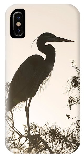 Silhouette In The Sunset IPhone Case