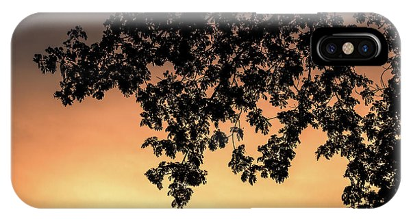 Silhouette Tree In The Dawn Sky IPhone Case