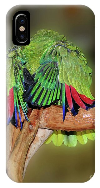 Silly Amazon Parrot IPhone Case