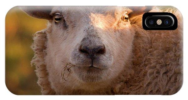 Sheep iPhone X / XS Case - Silly Face by Angel Ciesniarska