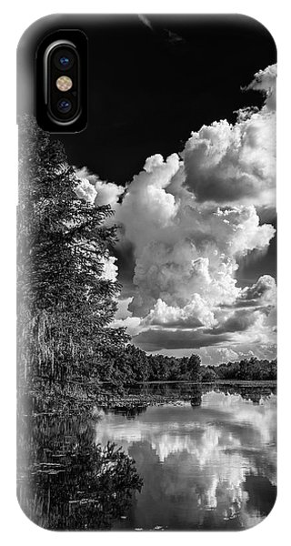 Bald Cypress iPhone Case - Silver Linings by Marvin Spates