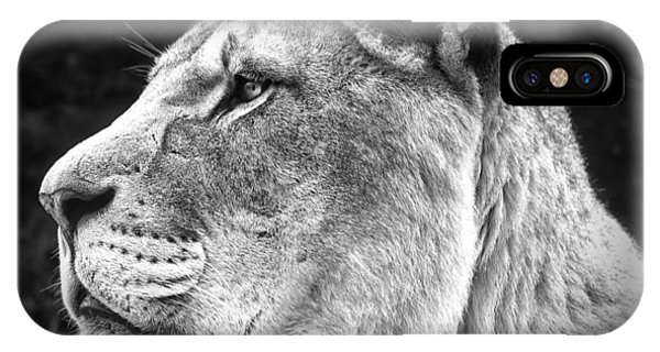 Silver Lioness  IPhone Case