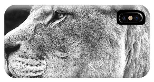 Silver Lioness - Squareformat IPhone Case