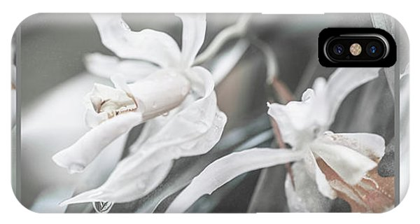 Silver Melody. Triptych IPhone Case