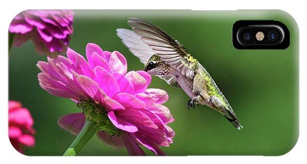 Beautiful Hummingbird iPhone Case - Simple Pleasure Hummingbird by Christina Rollo