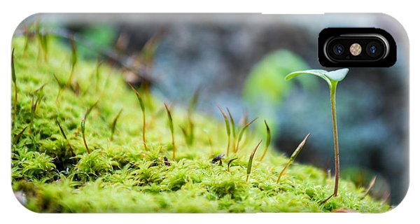 Simple Sprout IPhone Case