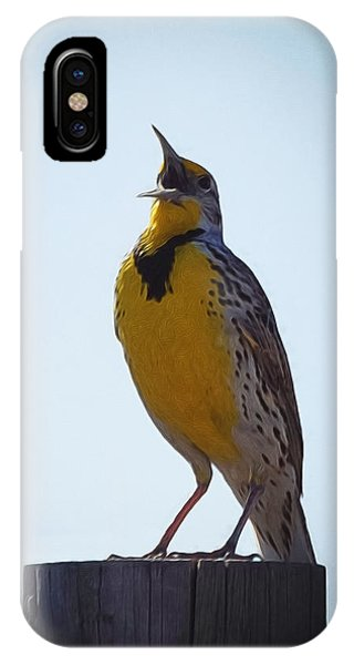 Meadowlark iPhone Case - Sing Me A Song by Ernie Echols