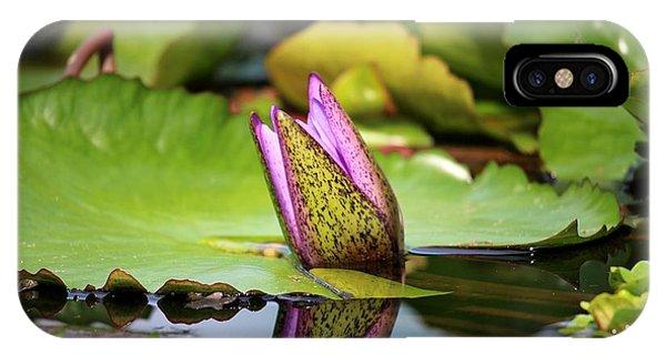 Singapore Bloom IPhone Case