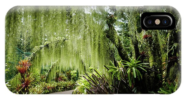 Singapore Orchid Garden IPhone Case