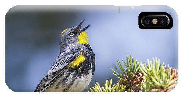 Singing Audubon's Warbler IPhone Case