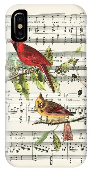 Swallow iPhone Case - Singing Cardinals by Delphimages Photo Creations