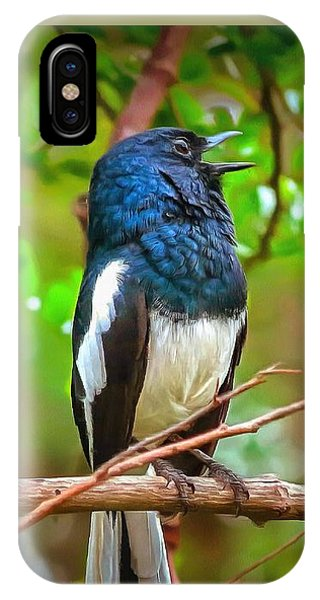 Singing Ceylonese Robin-magpie IPhone Case