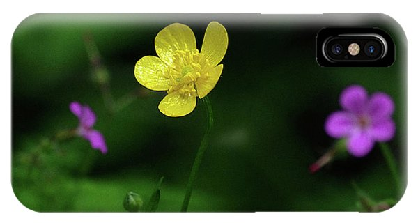 Single Buttercup Two Stinky Bob IPhone Case