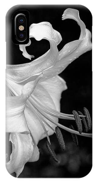 iPhone Case - Single Lily In Black And White. by Bill Linn