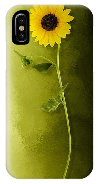 IPhone Case featuring the photograph Single Long Stem Sunflower by Debi Dalio
