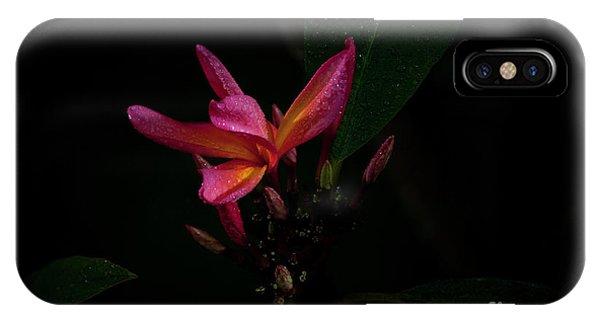 Single Red Plumeria Bloom IPhone Case